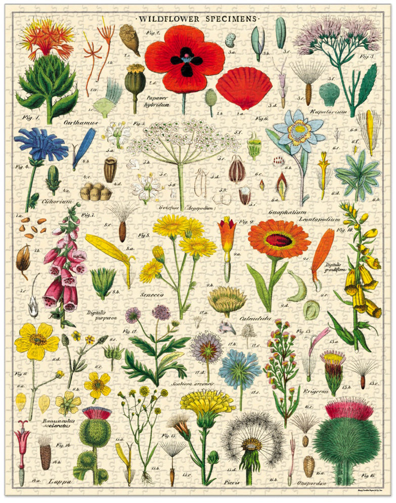 Wild Flowers Vintage Puzzle, by Cavallini
