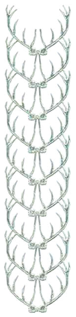 Silver_Dresden_Antlers