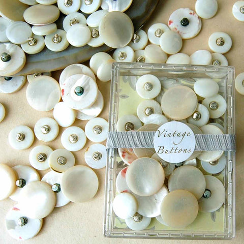 Shell Shank Buttons - Vintage