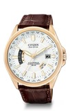 WORLD PERPETUAL A-T CB0013-04A