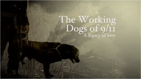 The Working Dogs of 9/11: A Legacy of Love