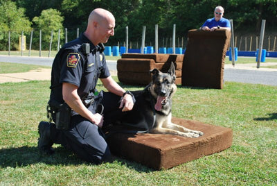 Lehigh Valley K9 Units Receive New Big Barker Beds