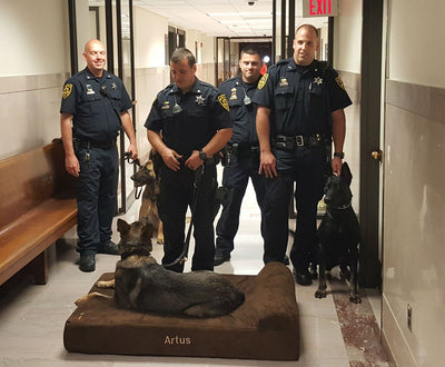 K-9 Officers from Montgomery County, PA Receive Big Barker Beds