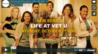 "Big Barker Team Celebrates Premiere of ""Life at Vet U"" With Penn Vet!"