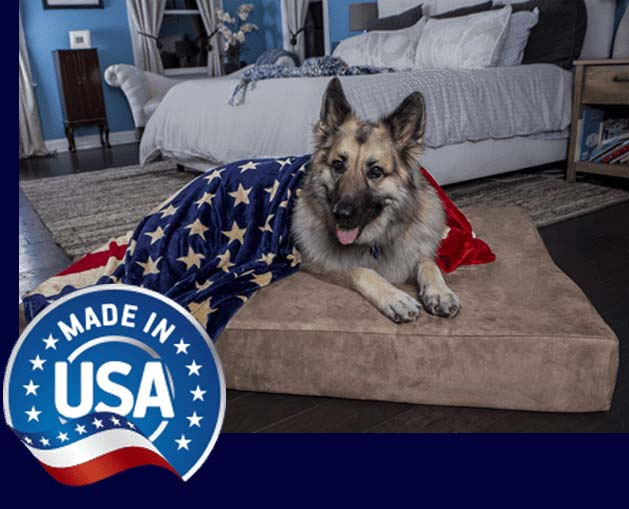 Orthopedic Dog Beds For Large Extra Large Dogs Big Barker