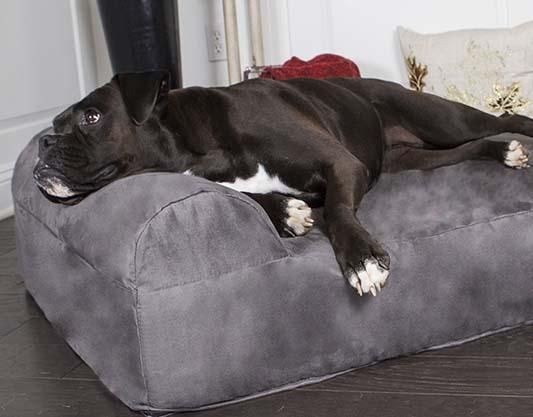 Orthopedic Dog Beds for Large & Extra Large Dogs | Big Barker