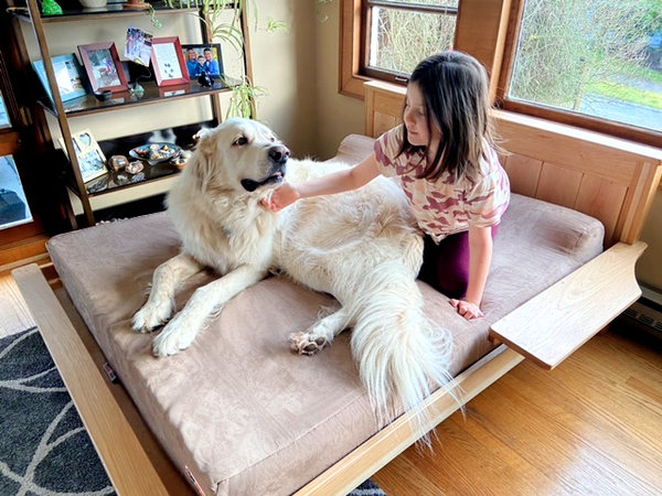 Golden Retriever and Child on Big Barker Bed with Bed Frame