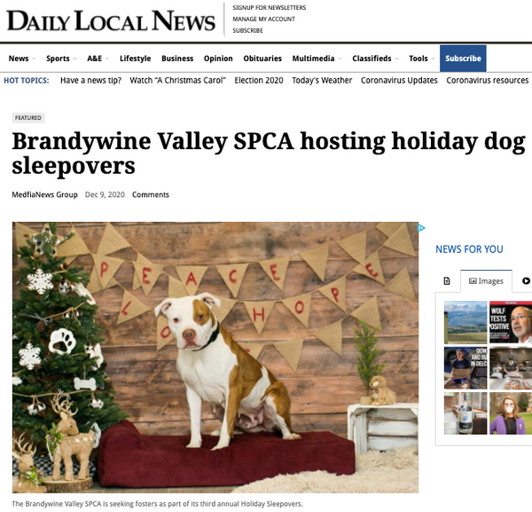 Daily Local News Holiday Sleepovers
