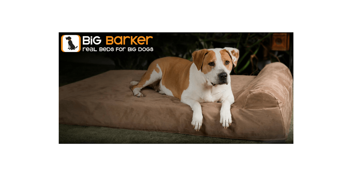 Picture of: Orthopedic Dog Beds For Large Extra Large Dogs Big Barker