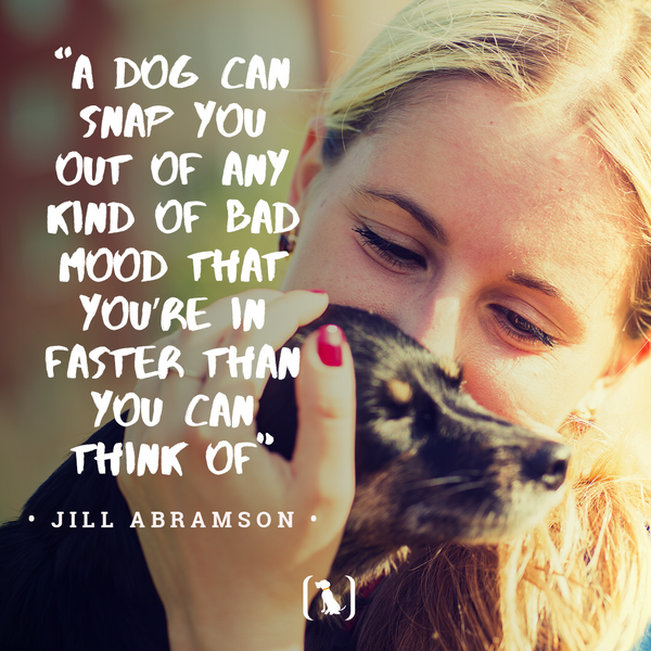 """""""A dog can snap you out of any kind of bad mood that you're in faster than you can think of"""""""