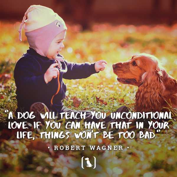"""""""A dog will teach you unconditional love. If you can have that in your life, things won't be too bad."""""""