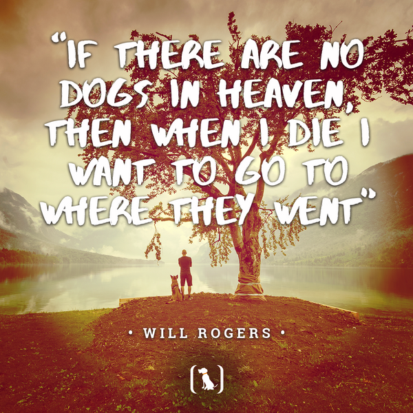 """""""If there are no dogs in heaven, then when I die I want to go to where they went"""""""