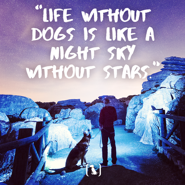 """""""Life without dogs is like a night sky without stars"""""""