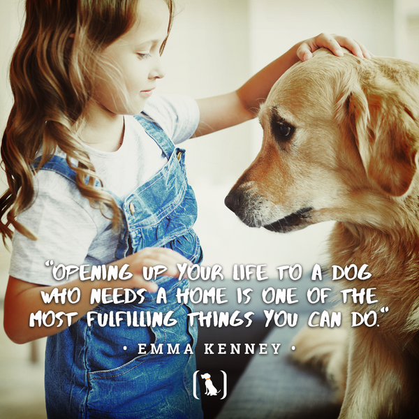 """""""Opening up your life to a dog who needs a home is one of the most fulfilling things you can do."""""""