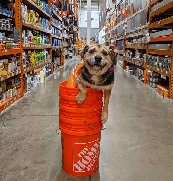 Heaven at Home Depot
