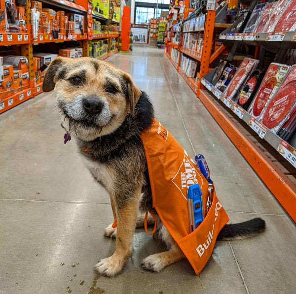 Heaven with her Home Depot Apron