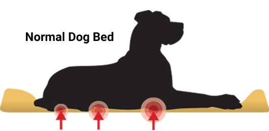 Orthopedic Dog Beds For Large Amp Extra Large Dogs Big Barker