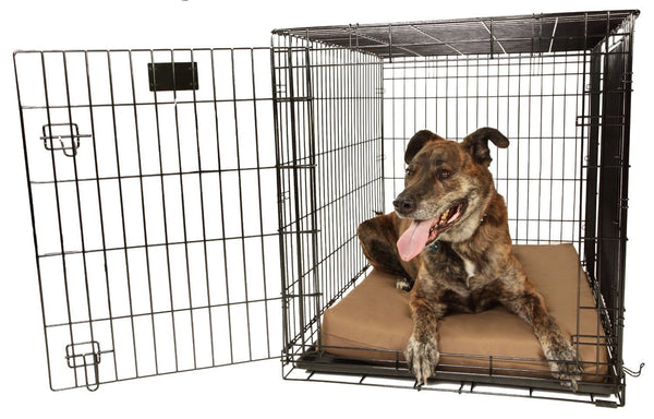 "Big Barker 4"" Crate Pad (Clearance)"