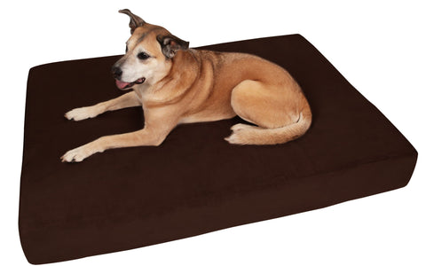 (Clearance) Giant Chocolate Bed - Sleek Edition