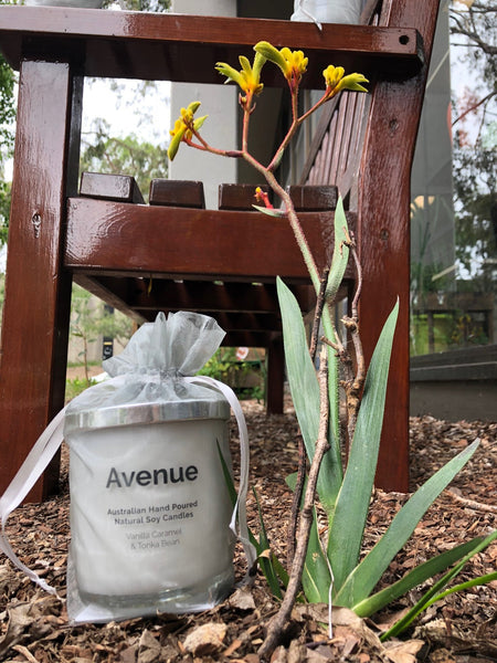 Avenue Originals Candle - Vanilla Bean, Caramel and Tonka Bean