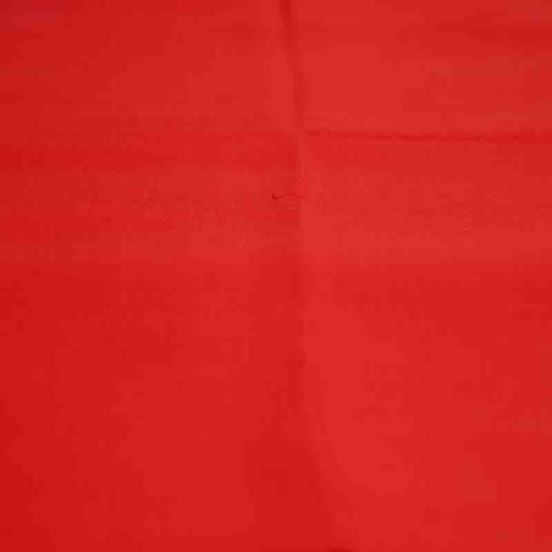 Winter Essential Pure Cashmere Stole - Scarlet Red