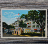 Gray Moss Inn Florida Postcard (Vintage)