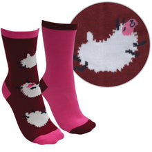 Load image into Gallery viewer, FARMYARD SOCKS- TWIN PACK