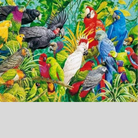 Image of COLORFUL BIRDS Diamond Painting Kit - DAZZLE CRAFTER