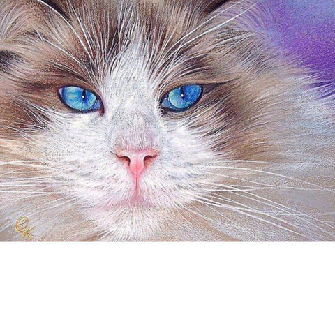 Image of BLUE EYED CAT  Diamond Painting Kit - DAZZLE CRAFTER