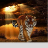 TIGER IN THE SUNSET Diamond Painting Kit - DAZZLE CRAFTER