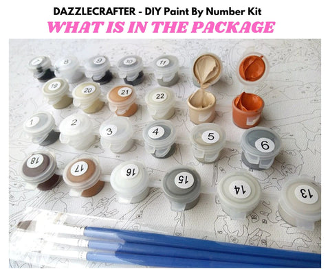 CAT GAZING OUT OF THE WINDOW  - DIY Adult Paint By Number Kit