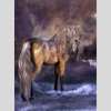 WILD HORSE  Diamond Painting Kit - DAZZLE CRAFTER