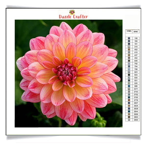PINK DAHLIA Diamond Painting Kit - DAZZLE CRAFTER
