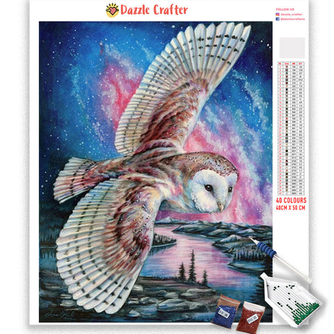 Image of FLYING OWL PINK NIGHT SKY Diamond Painting Kit