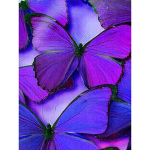 VIOLET BEAUTIES BUTTERFLY Diamond Painting Kit