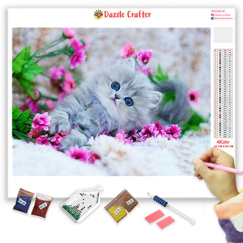 Image of SNOW WHITE CUTE KITTEN Diamond Painting Kit - DAZZLE CRAFTER