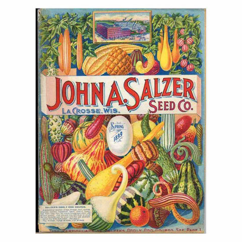 Image of GARDEN SEED PACKET VINTAGE Diamond Painting Kit