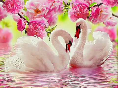 Image of SWAN LOVE Diamond Painting Kit