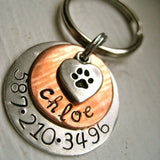 Chloe Pet Tag