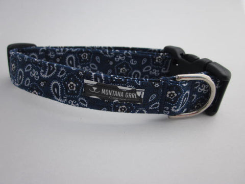 Blue Giddy Up Pet Collar