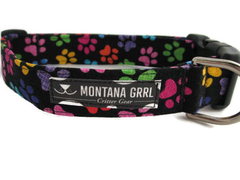 Colorful Paws Dog Collar