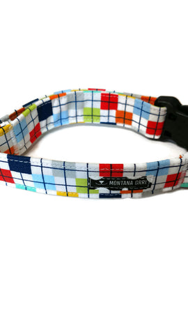 Confetti Pet Collar and Leash