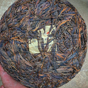 Coyotes Shadow - 500 Year Old Tree Mengku Raw Puerh w/ 12 Years of Aging