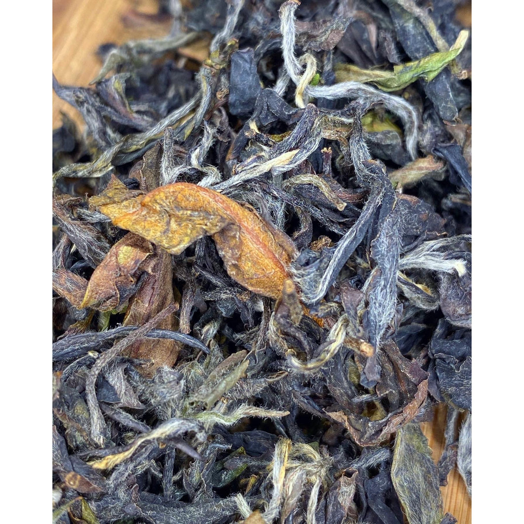 Dragons Gate - Aged Taiwanese Qin Xing White Tea