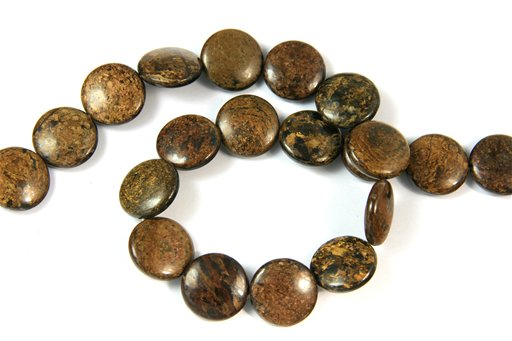 Bronzite, 18mm, Coin Shape Beads