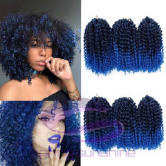 Kinky Curly CROCHET BRAIDS Ombre Hair