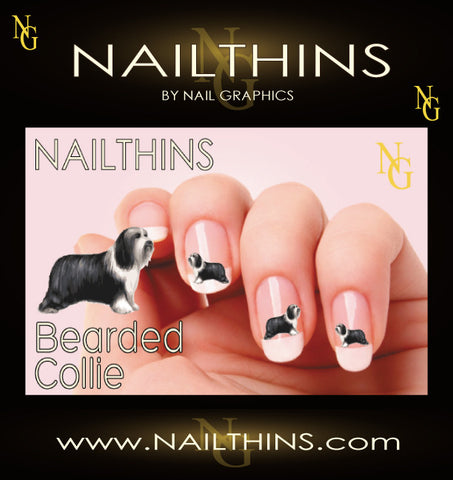 Bearded Collie, NAILTHINS Nail Decal