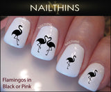 Flamingo Nail Decal by Nailthins
