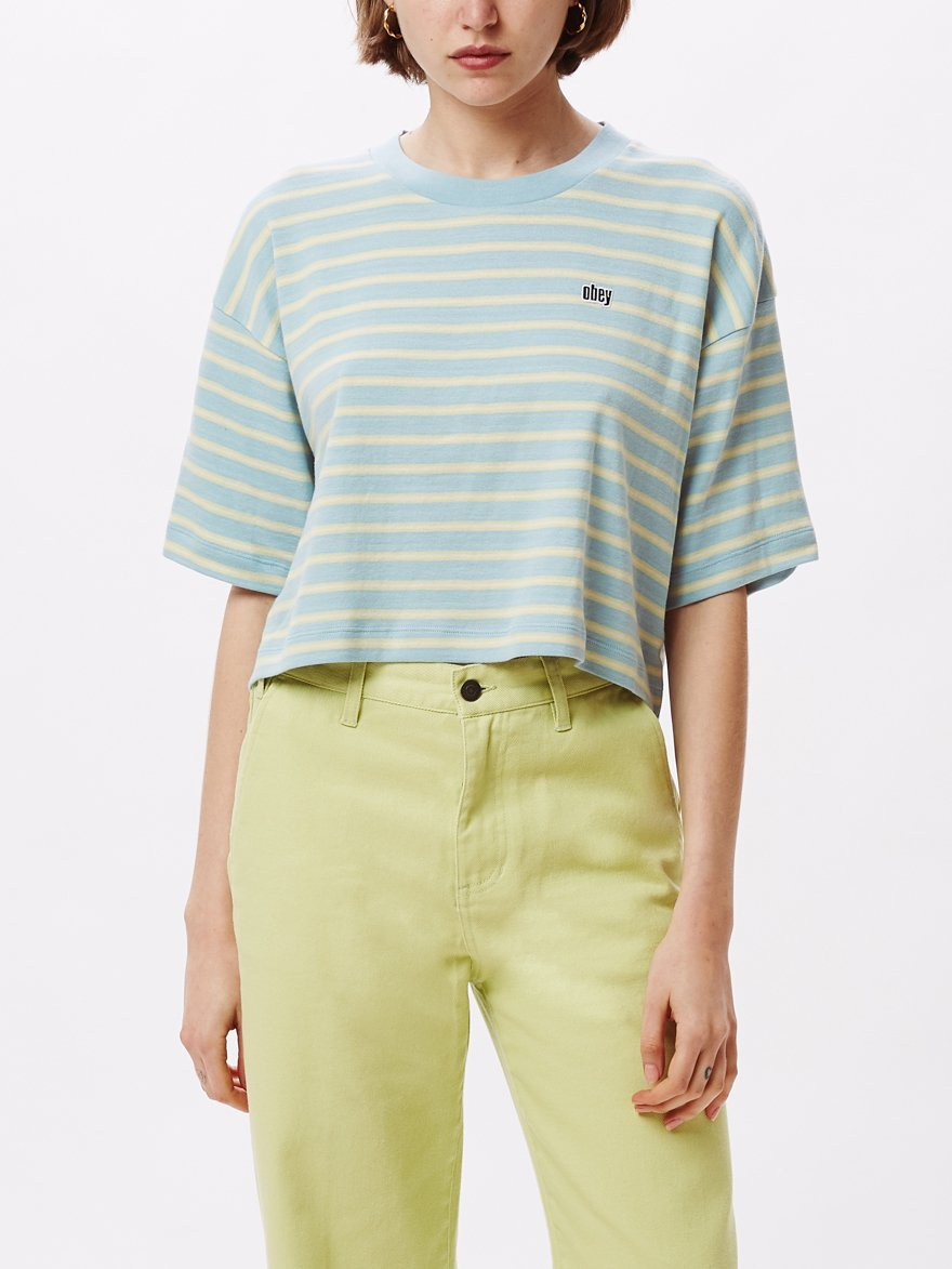 Blue 90's Stripe Boxy Crop Top