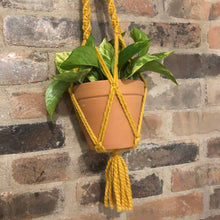 Load image into Gallery viewer, Macrame Plant Hangers